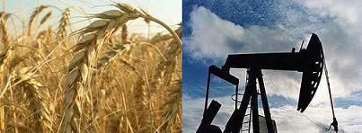 Пшеница и нефть